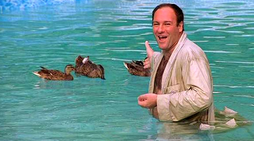 Tony Soprano with the ducks