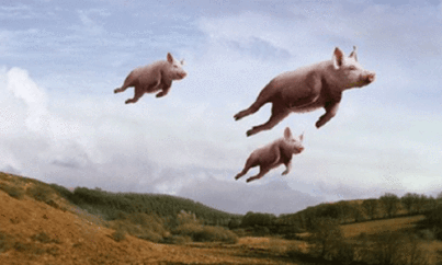 pigs can fly 4